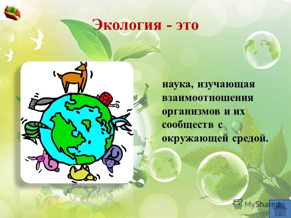 Экология - это наука, изучающая взаимоотношения организмов и их сообществ с окружающей средой.