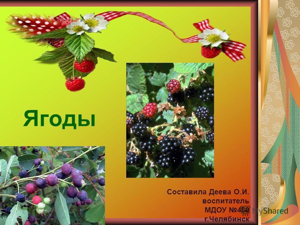 Ягоды Составила Деева О.И. воспитатель МДОУ 460 г.Челябинск