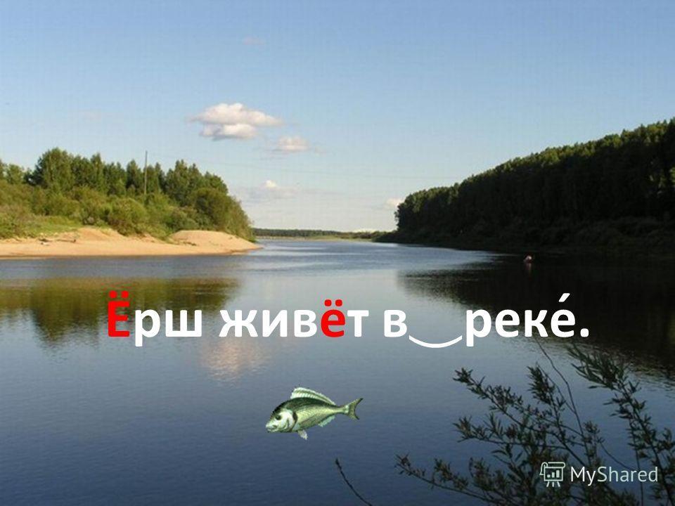 Про ̅ верь себя. Ёрш живёт в реке́.