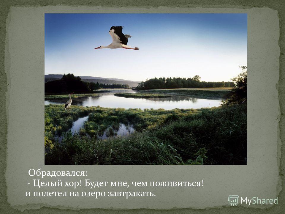 Обрадовался: - Целый хор! Будет мне, чем поживиться! и полетел на озеро завтракать.