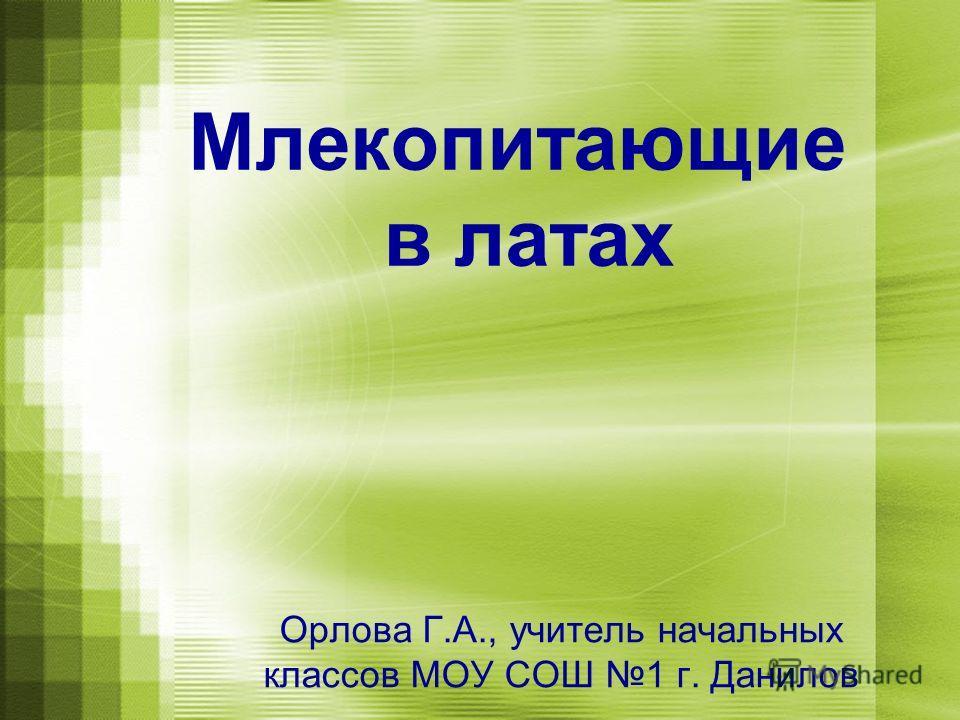 Млекопитающие в латах Орлова Г.А., учитель начальных классов МОУ СОШ 1 г. Данилов