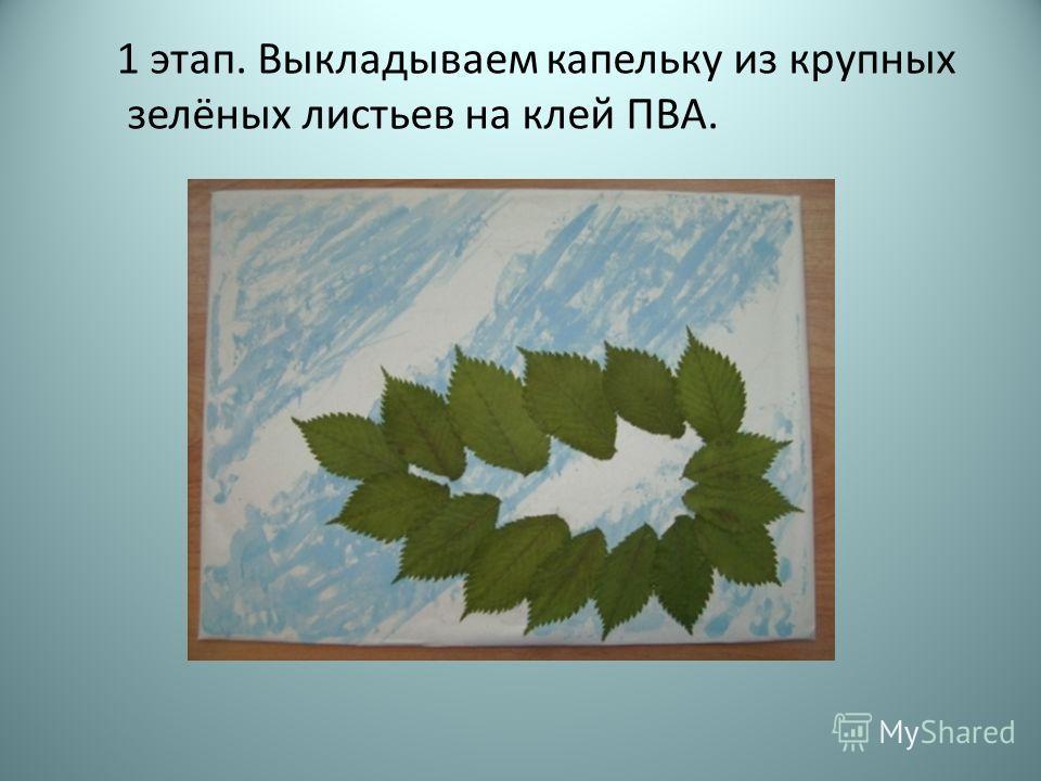 1 этап. Выкладываем капельку из крупных зелёных листьев на клей ПВА.