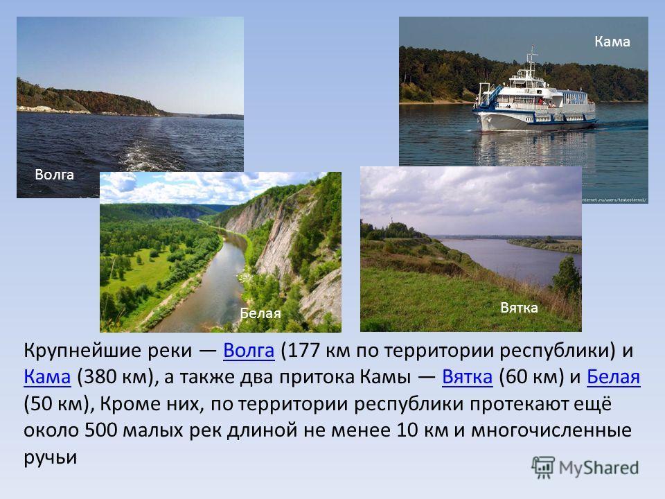 Крупнейшие реки Волга (177 км по территории республики) и Кама (380 км), а также два притока Камы Вятка (60 км) и Белая (50 км), Кроме них, по территории республики протекают ещё около 500 малых рек длиной не менее 10 км и многочисленные ручьи Волга