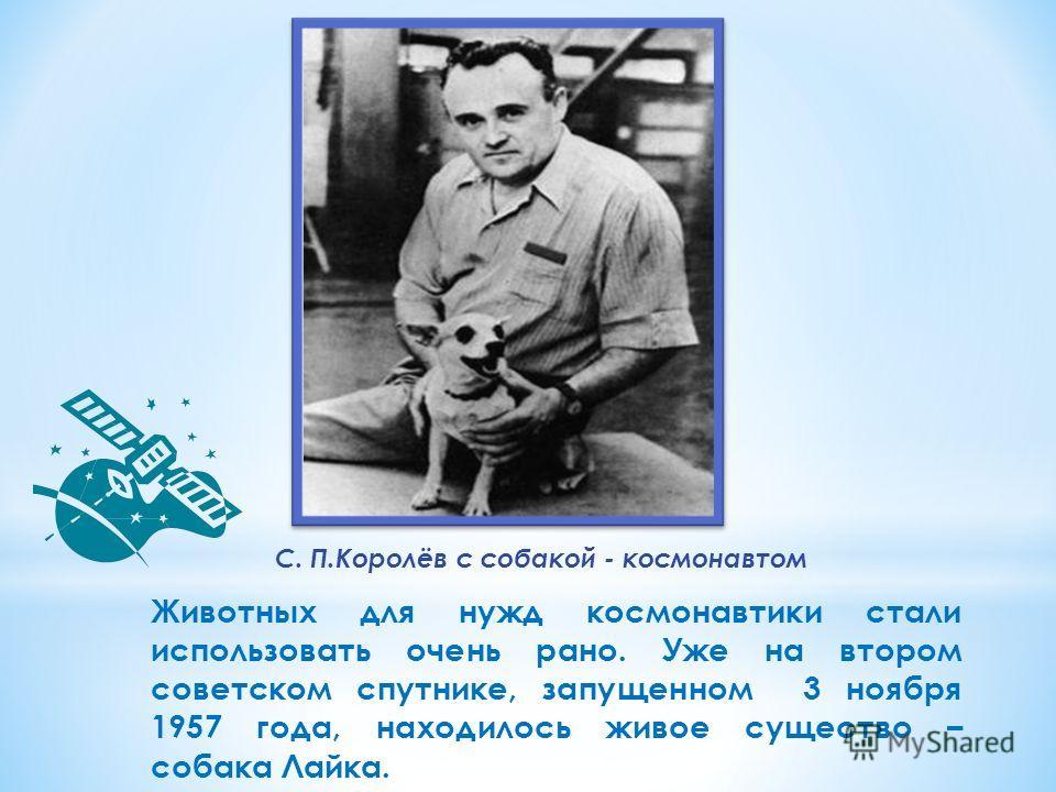 С. П.Королёв с собакой - космонавтом Животных для нужд космонавтики стали использовать очень рано. Уже на втором советском спутнике, запущенном 3 ноября 1957 года, находилось живое существо – собака Лайка.