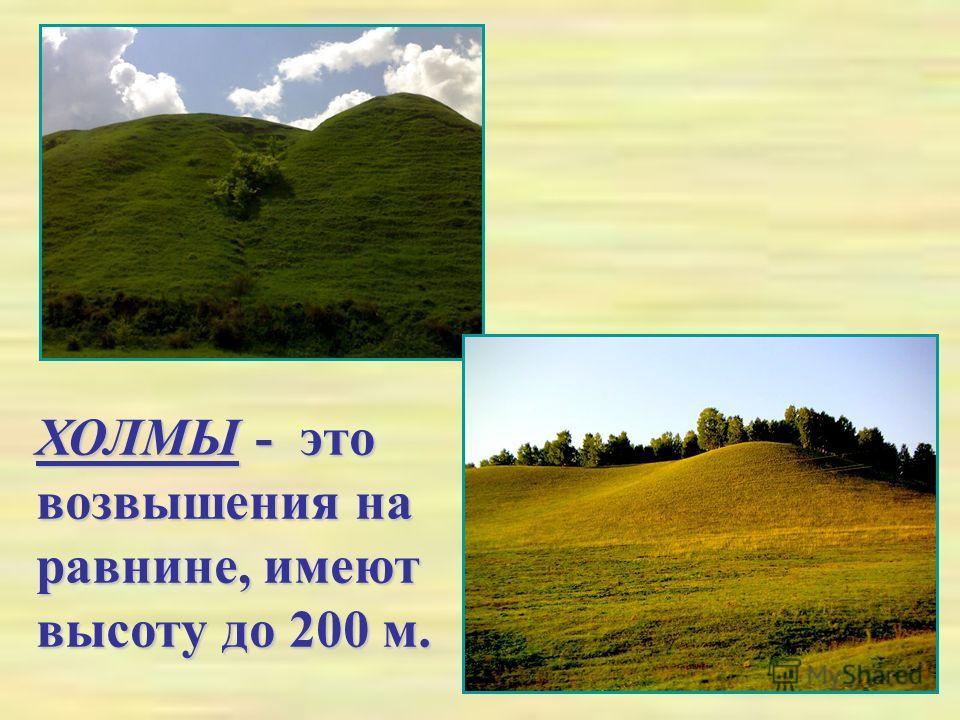 ХОЛМЫ - это возвышения на равнине, имеют высоту до 200 м.