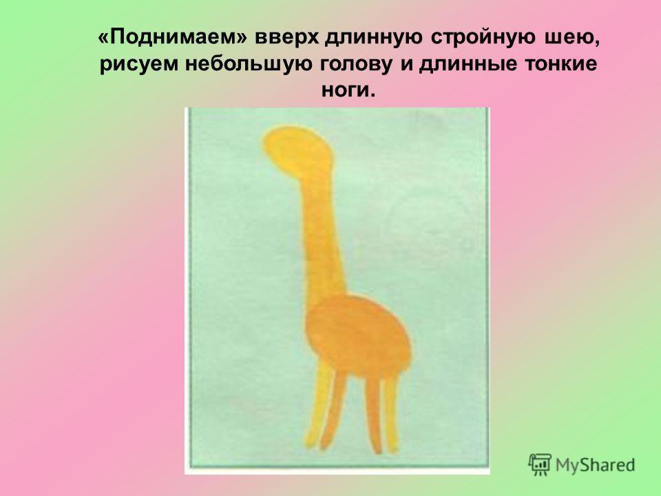 «Поднимаем» вверх длинную стройную шею, рисуем небольшую голову и длинные тонкие ноги.