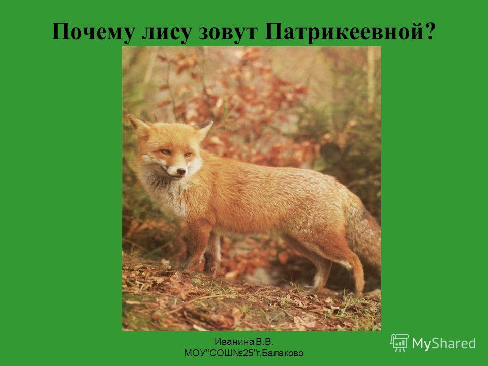 Иванина В.В. МОУ