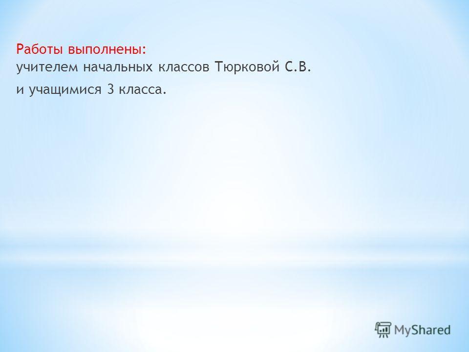 Работы выполнены: учителем начальных классов Тюрковой С.В. и учащимися 3 класса.