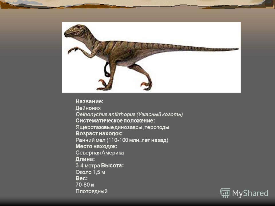 Название: Дейноних Deinonychus antirrhopus (Ужасный коготь) Систематическое положение: Ящеротазовые динозавры, тероподы Возраст находок: Ранний мел (110-100 млн. лет назад) Место находок: Северная Америка Длина: 3-4 метра Высота: Около 1,5 м Вес: 70-