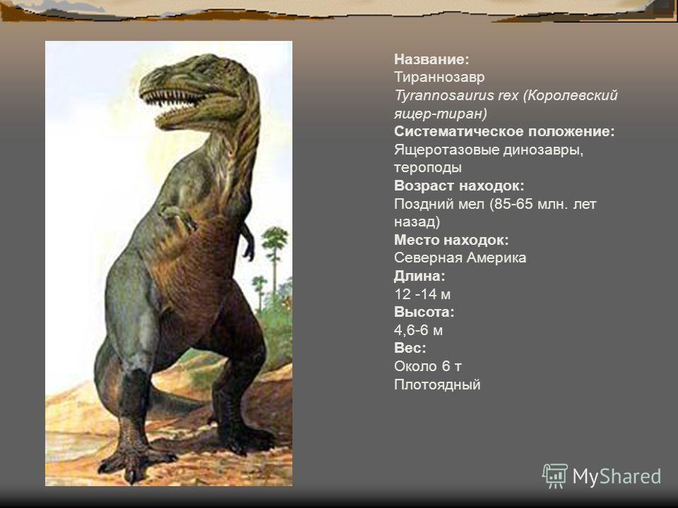 Название: Тираннозавр Tyrannosaurus rex (Королевский ящер-тиран) Систематическое положение: Ящеротазовые динозавры, тероподы Возраст находок: Поздний мел (85-65 млн. лет назад) Место находок: Северная Америка Длина: 12 -14 м Высота: 4,6-6 м Вес: Окол