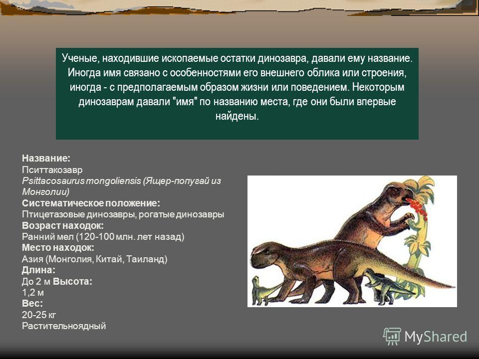 Ученые, находившие ископаемые остатки динозавра, давали ему название. Иногда имя связано с особенностями его внешнего облика или строения, иногда - с предполагаемым образом жизни или поведением. Некоторым динозаврам давали