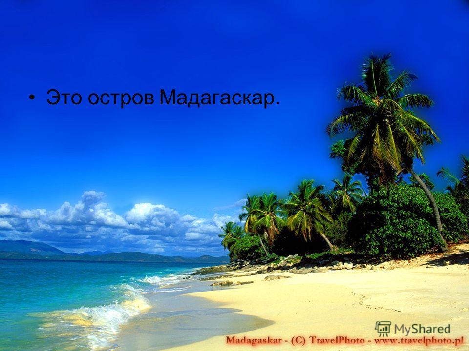 Это остров Мадагаскар.