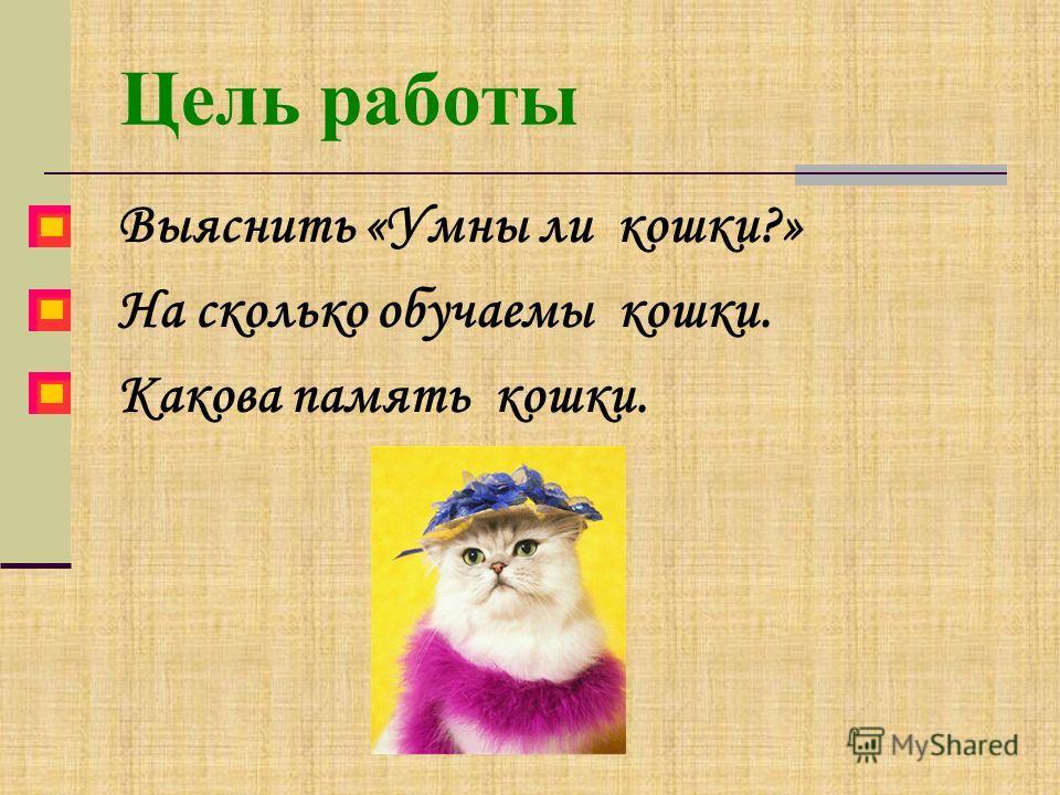 Цель работы Выяснить «Умны ли кошки?» На сколько обучаемы кошки. Какова память кошки.