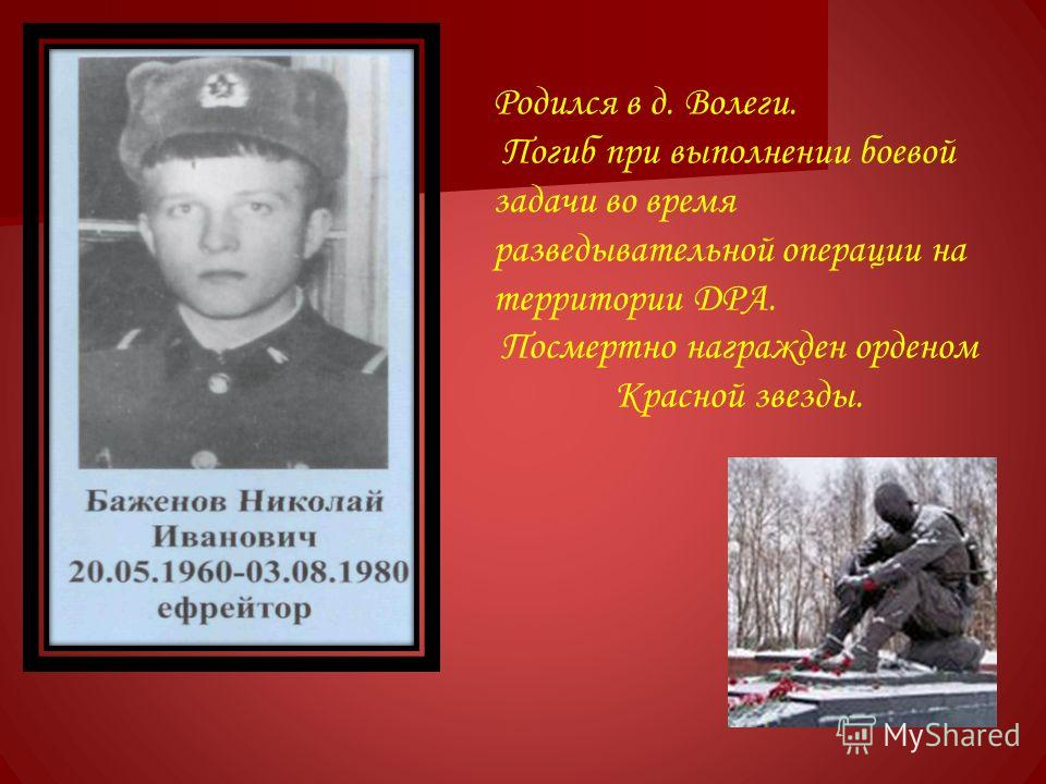Родился в д. Волеги. Погиб при выполнении боевой задачи во время разведывательной операции на территории ДРА. Посмертно награжден орденом Красной звезды.