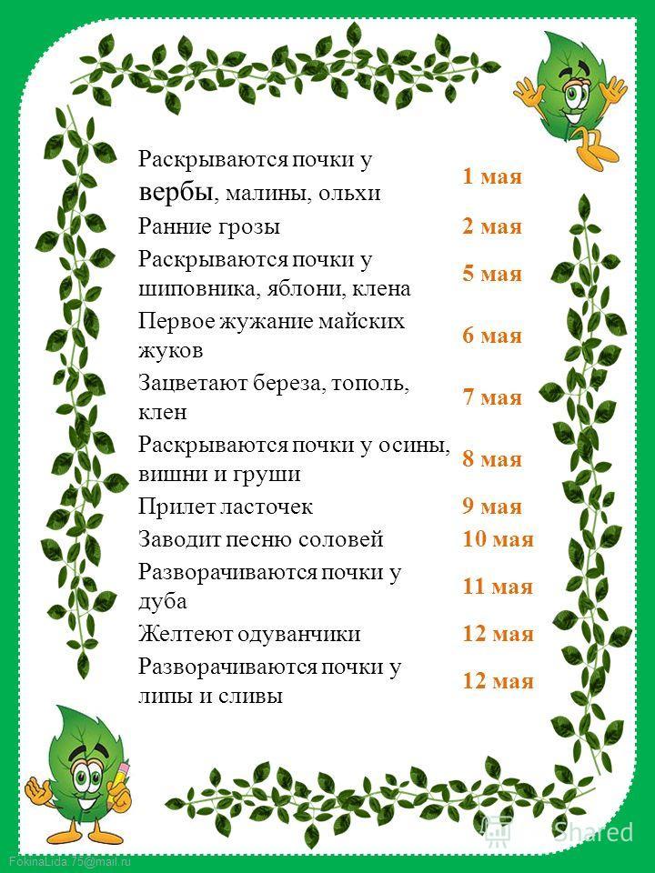 FokinaLida.75@mail.ru Раскрываются почки у вербы, малины, ольхи 1 мая Ранние грозы 2 мая Раскрываются почки у шиповника, яблони, клена 5 мая Первое жужание майских жуков 6 мая Зацветают береза, тополь, клен 7 мая Раскрываются почки у осины, вишни и г