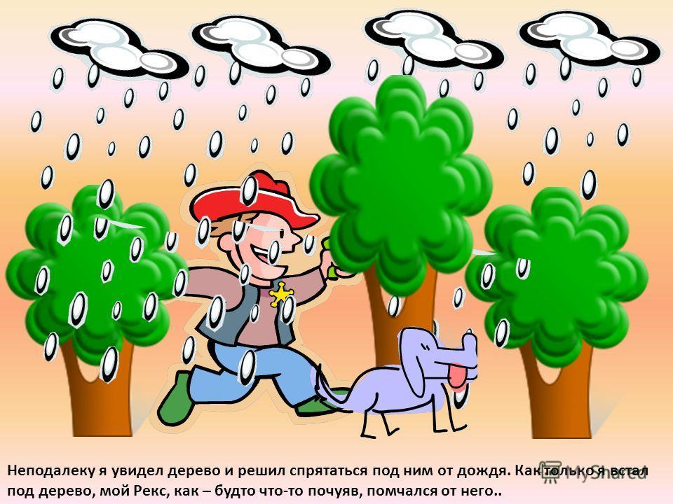 Тут погода стала портиться. Солнце исчезло, наползли тучи, поднялся ветер, и начался сильный дождь.