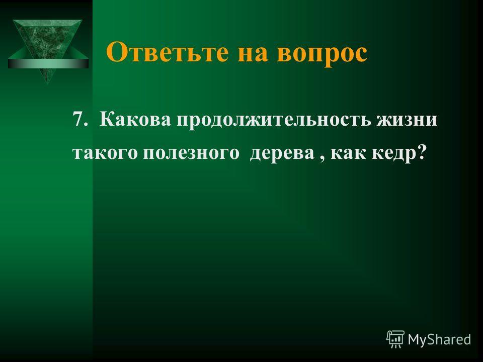 Ответьте на вопрос 7. Какова продолжительность жизни такого полезного дерева, как кедр?