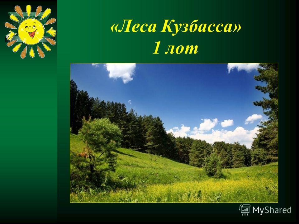 «Леса Кузбасса» 1 лот