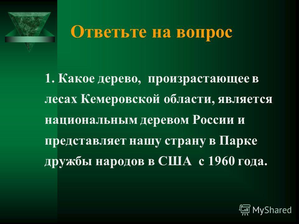 Ответьте на вопрос 1. Какое дерево, произрастающее в лесах Кемеровской области, является национальным деревом России и представляет нашу страну в Парке дружбы народов в США с 1960 года.