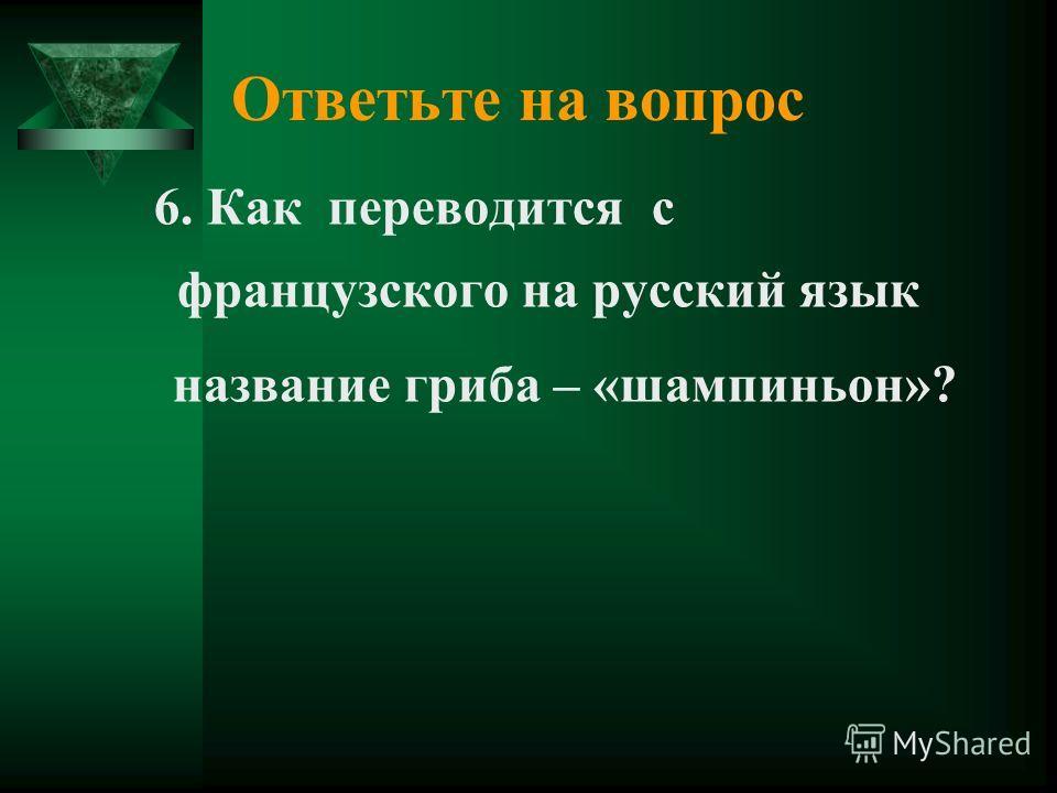 Ответьте на вопрос 6. Как переводится с французского на русский язык название гриба – «шампиньон»?