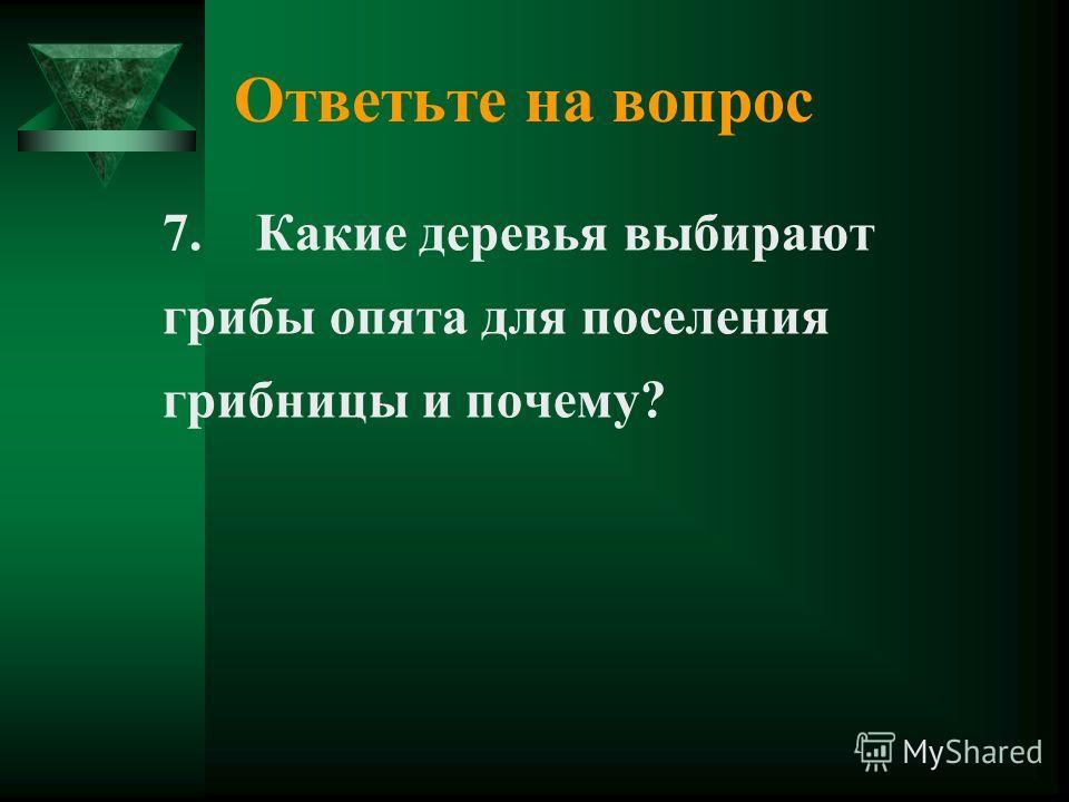 Ответьте на вопрос 7. Какие деревья выбирают грибы опята для поселения грибницы и почему?
