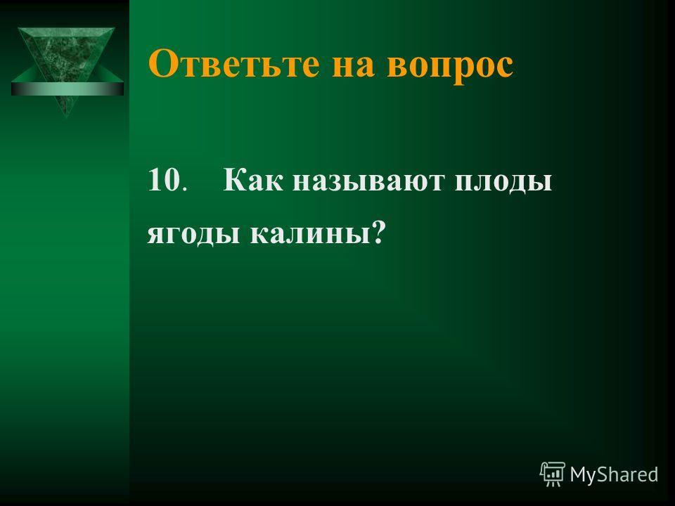 Ответьте на вопрос 10. Как называют плоды ягоды калины?