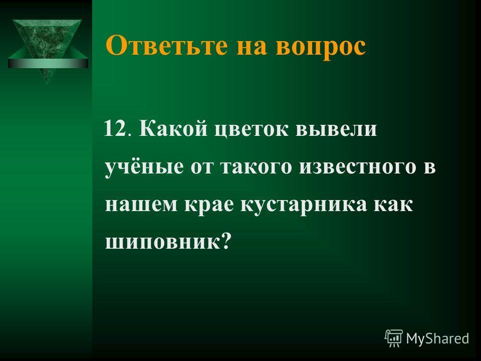 Ответьте на вопрос 12. Какой цветок вывели учёные от такого известного в нашем крае кустарника как шиповник?
