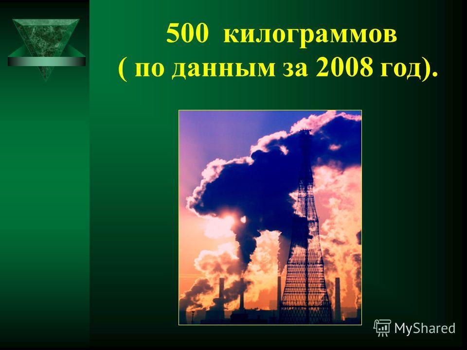 500 килограммов ( по данным за 2008 год).