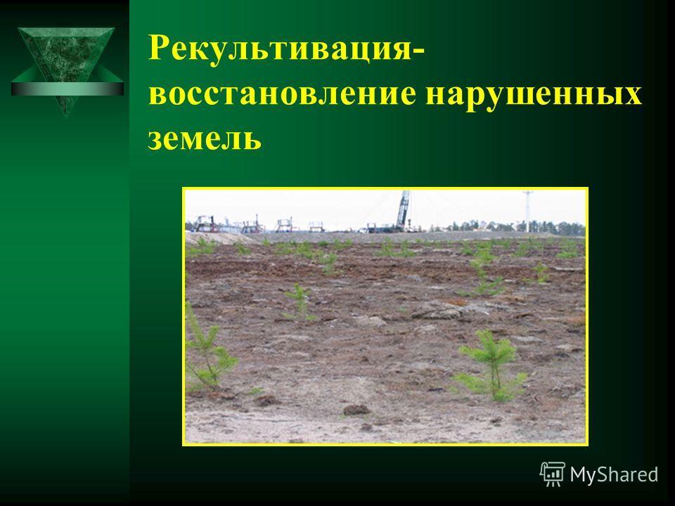 Рекультивация- восстановление нарушенных земель