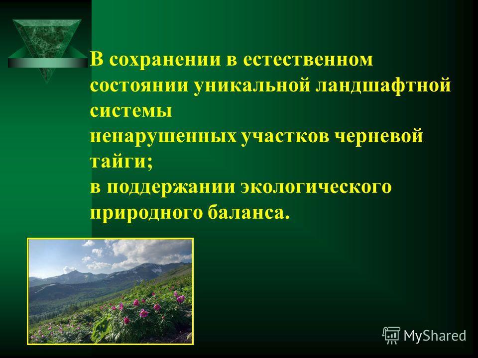 В сохранении в естественном состоянии уникальной ландшафтной системы ненарушенных участков черневой тайги; в поддержании экологического природного баланса.