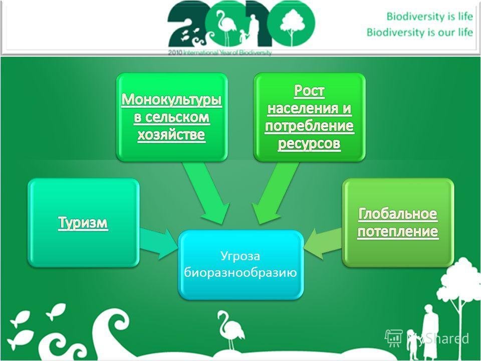 Угроза биоразнообразию