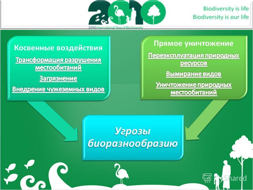 Угрозы биоразнообразию