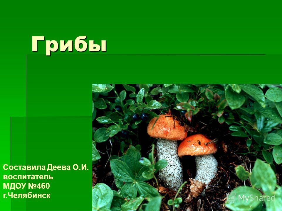 Грибы Составила Деева О.И. воспитатель МДОУ 460 г.Челябинск