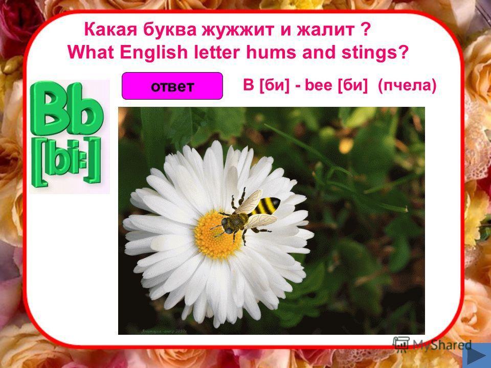 Какая буква жужжит и жалит ? What English letter hums and stings? ответ B [би] - bee [би] (пчела)