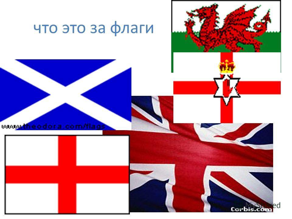 что это за флаги