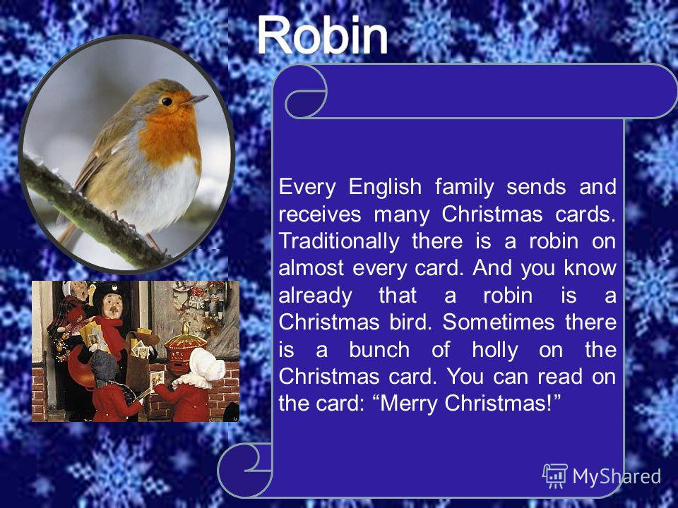 Every English family sends and receives many Christmas cards. Traditionally there is a robin on almost every card. And you know already that a robin is a Christmas bird. Sometimes there is a bunch of holly on the Christmas card. You can read on the c