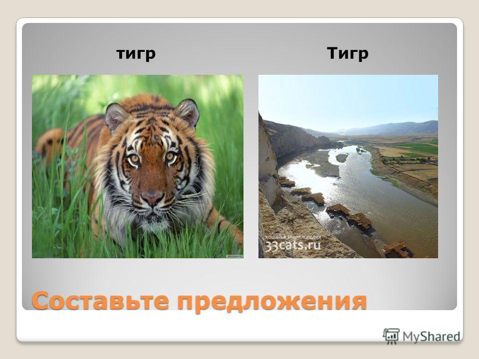 Составьте предложения тигр Тигр