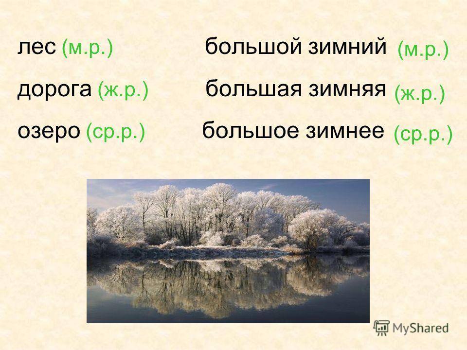 лес (м.р.) большой зимний дорога (ж.р.) большая зимняя озеро (ср.р.) большое зимнее (м.р.) (ср.р.) (ж.р.)