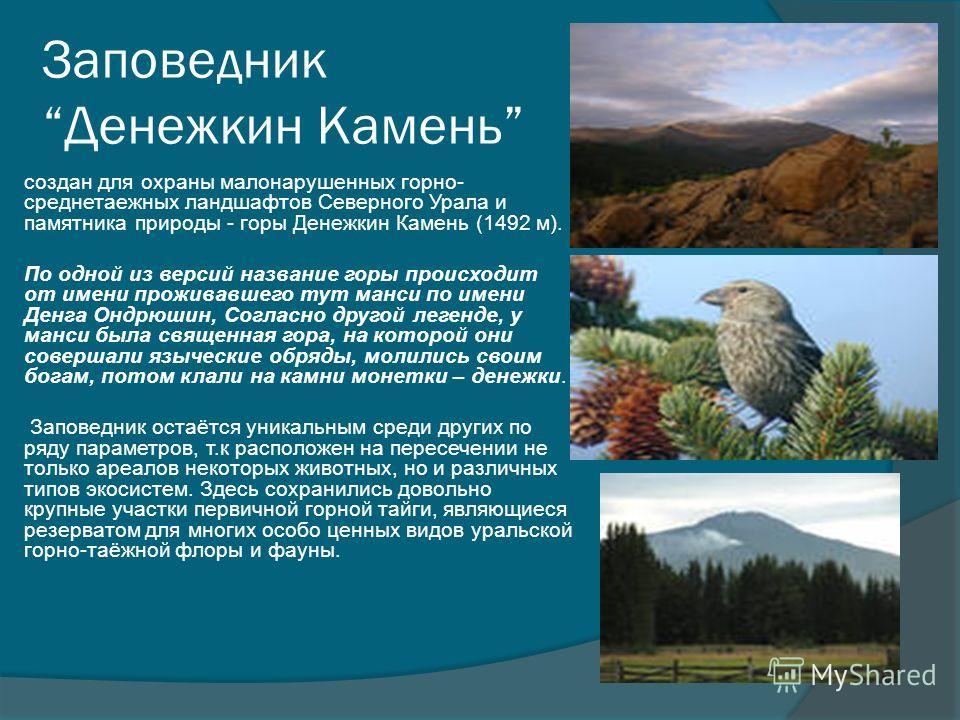 Заповедник Денежкин Камень создан для охраны малонарушенных горно- среднетаежных ландшафтов Северного Урала и памятника природы - горы Денежкин Камень (1492 м). По одной из версий название горы происходит от имени проживавшего тут манси по имени Денг