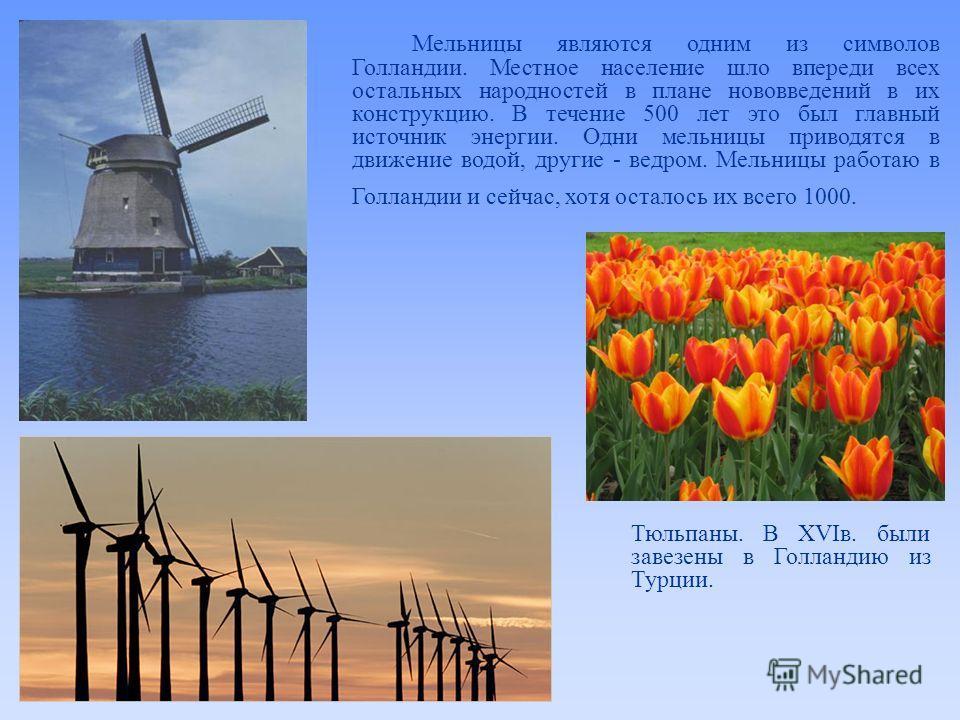 Мельницы являются одним из символов Голландии. Местное население шло впереди всех остальных народностей в плане нововведений в их конструкцию. В течение 500 лет это был главный источник энергии. Одни мельницы приводятся в движение водой, другие - вед