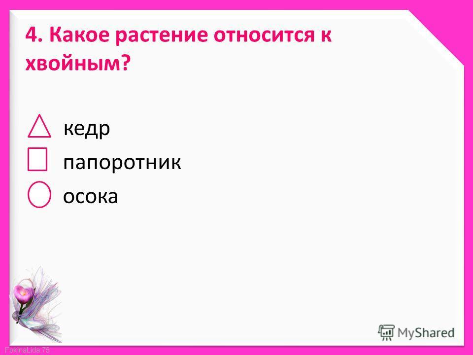 FokinaLida.75 4. Какое растение относится к хвойным? кедр папоротник осока