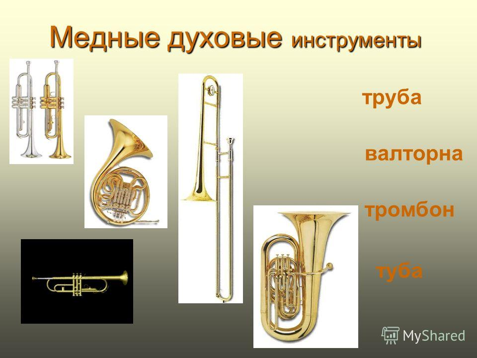 Деревянные духовые инструменты -низкий по звучанию инструмент, изобретенный в XVI веке. Представляет собой длинную трубку (длина ее канала 2,5 м), сложенную в несколько раз: итальянское fagotto означает - вязанка, связка. Корпус инструмента имеет око