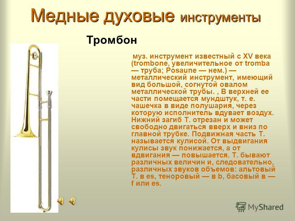 Медные духовые инструменты - ведет происхождение от старинного охотничьего рога (немецкое Waldhorn - лесной рог). Инструмент представляет собой длинную узкоканальную трубку, свернутую спиралеобразно и завершающуюся широким раструбом. Тембр валторны -