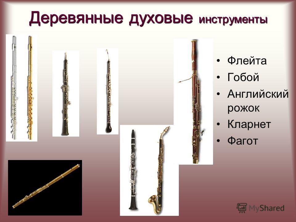 Струнные смычковые инструменты самый большой по размеру и самый низкий по звучанию инструмент из семейства струнных смычковых. «Предками» контрабаса были старинные басовые виолы, от которых он заимствовал многие особенности своей конструкции. По внеш