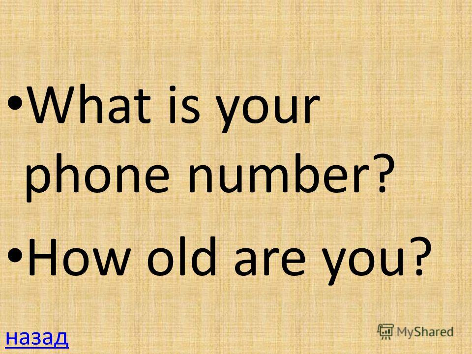 What is your phone number? How old are you? назад