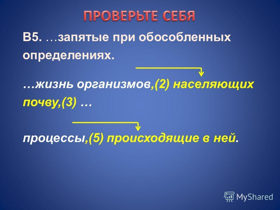 В5. …запятые при обособленных определениях. …жизнь организмов,(2) населяющих почву,(3) … процессы,(5) происходящие в ней.
