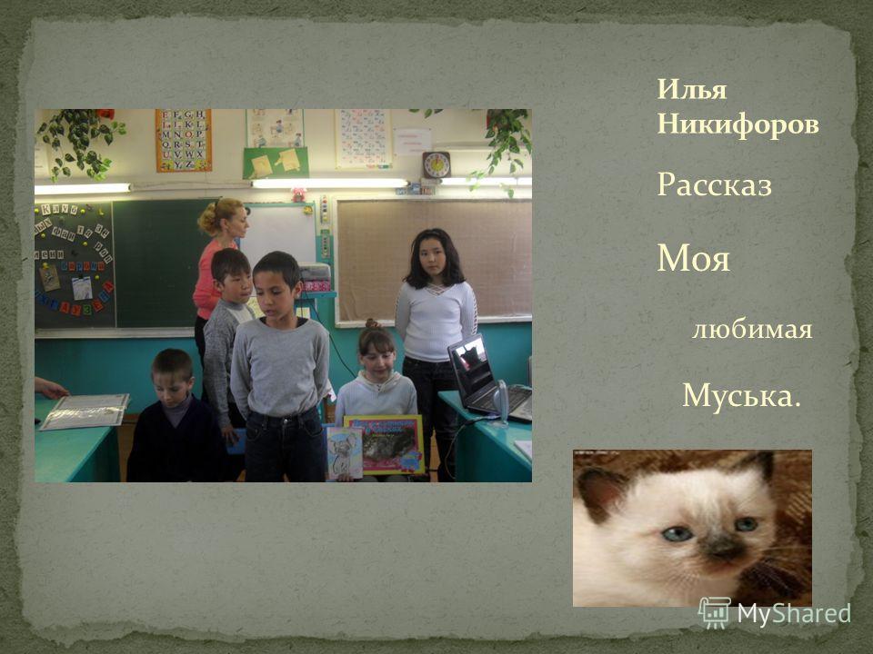 Рассказ Моя любимая Муська.