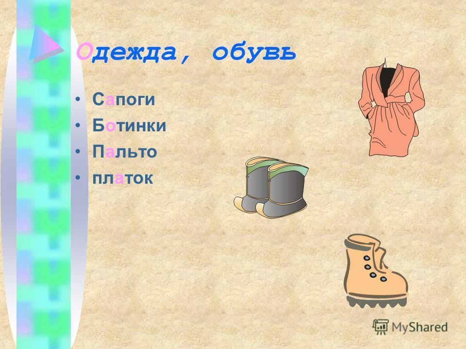 Одежда, обувь Сапоги Ботинки Пальто платок