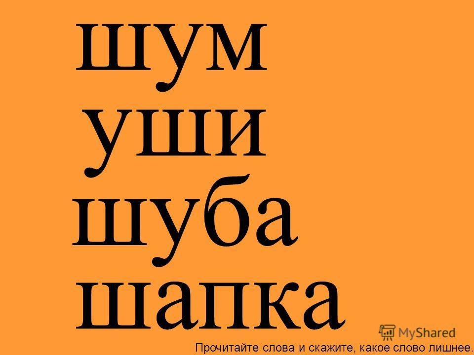 шум шуба шапка уши Прочитайте слова и скажите, какое слово лишнее.