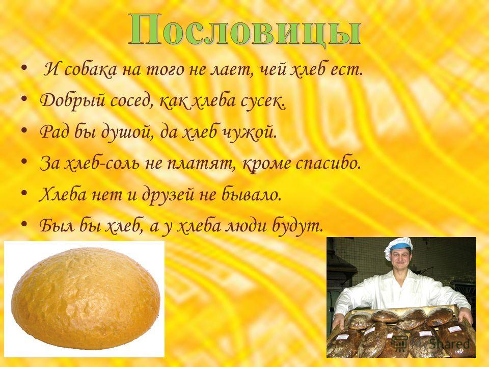 И собака на того не лает, чей хлеб ест. Добрый сосед, как хлеба сусек. Рад бы душой, да хлеб чужой. За хлеб-соль не платят, кроме спасибо. Хлеба нет и друзей не бывало. Был бы хлеб, а у хлеба люди будут.